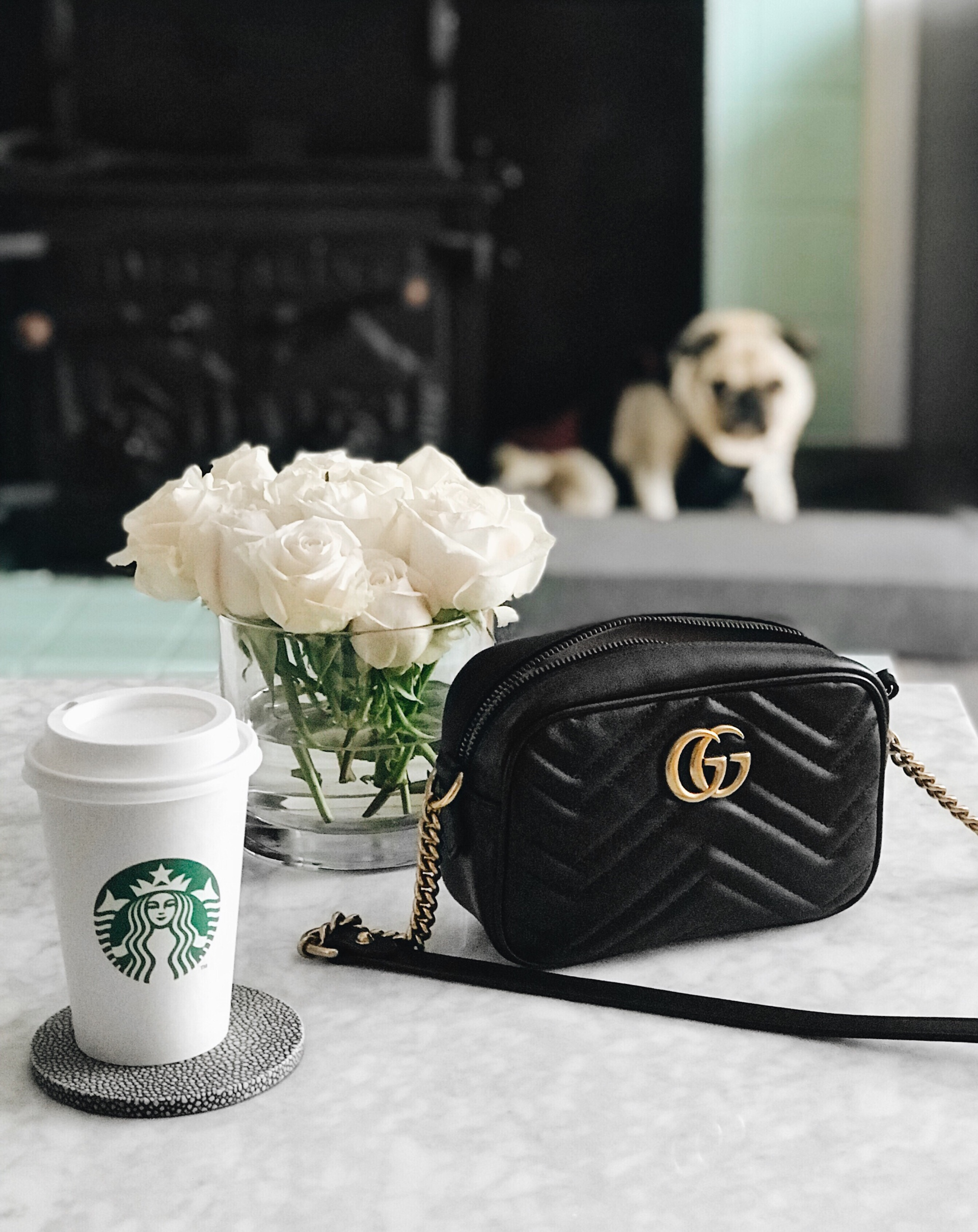 Starbucks coffee and Gucci Marmont handbag | CoffeeAndHandbags.com