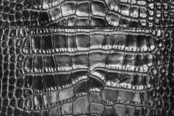 embossed croc print leather